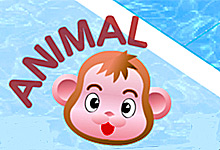Animal Maze Making