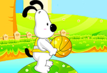 Basket Dog