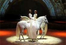 Cavalia Horse Show