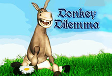 Donkey Dilemma