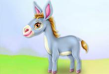 Donkey Horse Caring