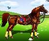 Dress Up Horse