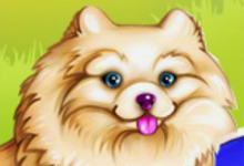 Elsas Pet Care