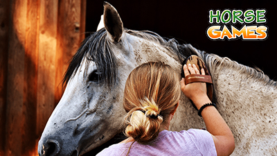Grooming your Horse and Ponies