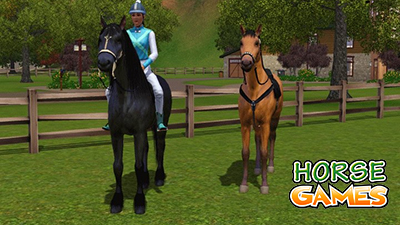Guide To Training Horses