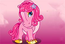 Horse Hair Studio2
