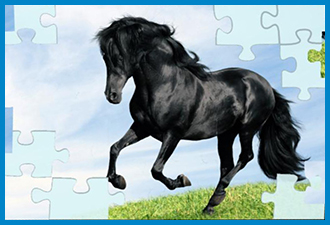 Horse Jigsaw Puzzles Game For Kids