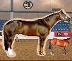 Horse Judging game