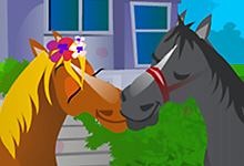 Horse Kissing