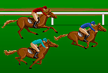 Horse Racing Steeplechase