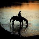 Horseback riding at night