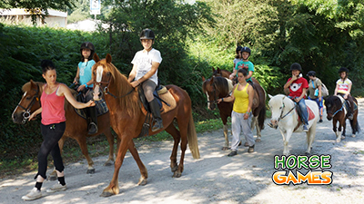 Horses and their Various Activities
