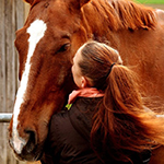Horses can read your emotions