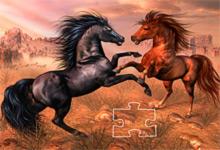Horses In Desert 6x6