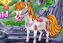 Little Pony First Aid