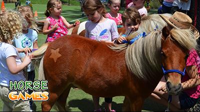 Pony Adorable Pet