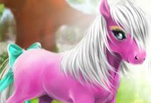 Pony Wood