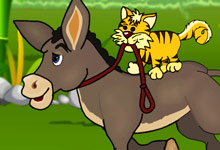 Puss Donkey