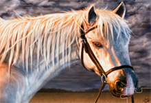 The White Horse 6x6