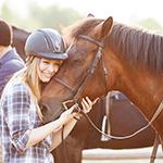 The horse is the best teacher