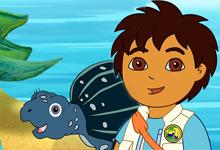 Tuga Sea Turtle
