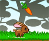 Fluffy Runner Flash Animal Game