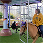Horse is not a Toy - Carousel in China slammed for using real horses