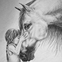Cute Little Girl Kissing a Horse - Epic Horse Drawing Picture