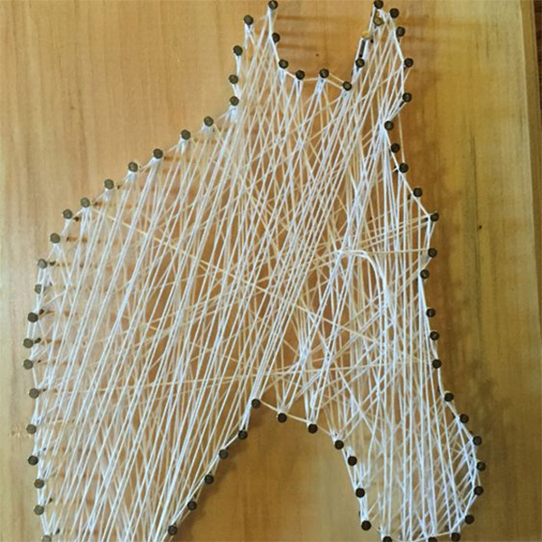 DIY Horse with Yarn