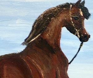 Horse Gift from Nature - Amazing Acrylic Painting