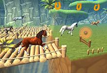Horse paradise My dream ranch