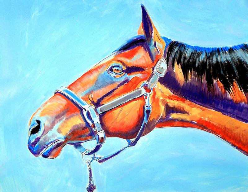 Red Reach Horse