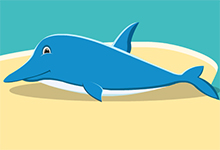 Sea Dolphin Rescue