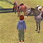 Star Stable News - horse-games.org