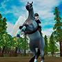 The New Starter Horse